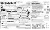 Biology - Biodiversity Notes / Review Page
