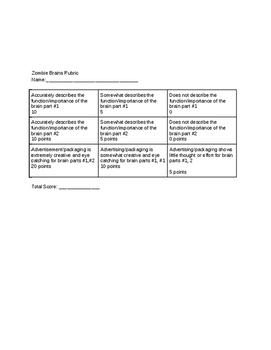 Biology Brain Behavior: Zombie Brain Products Project