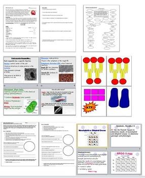 Biology Bundle Pack #1