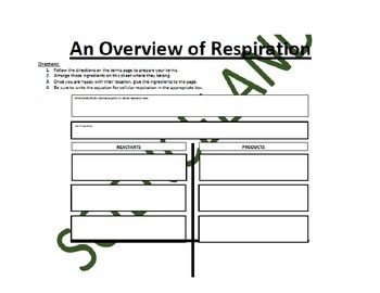 Biology Bundle: Photosynthesis and Cellular Respiration Flow Charts