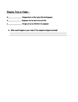 Chemical Basis for Life - Carbon, Water and Enzymes Worksheet