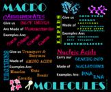 Biology Macromolecules Poster