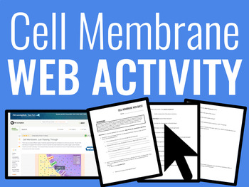 Biology: Cell Membrane Web Activity