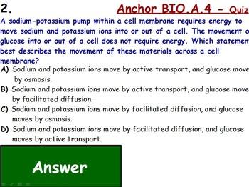 Cell Transport Assessment (Quiz)