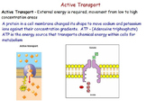 Cell Transport - Active and Passive Transport; Osmosis; Diffusion