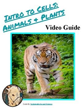 Biology-Cells: FuseSchool Video Guide