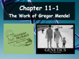 Biology - Chapter 11: Introduction to Genetics Powerpoints and Guided Notes