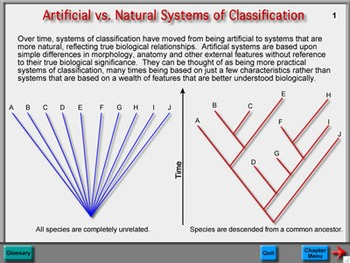 Biology Chapter 13: Classification