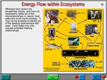 Biology Chapter 2: Ecosystems