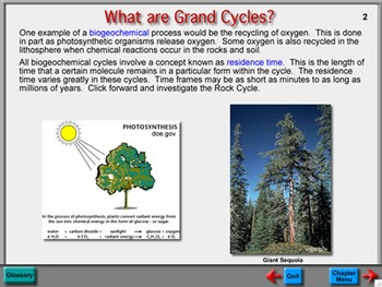 Biology Chapter 3: Grand Cycles