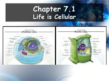 Biology - Chapter 7 (7.1 Life is Cellular Powerpoint and Guided Notes)