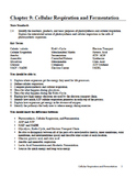 Biology - Chapter 9: Cell Respiration and Fermentation Study Guide (w/ QR Codes)