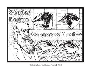 History: Charles Darwin Zen Coloring Page; Galapagos Island, Finches