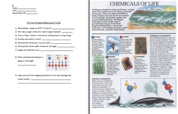 Chemical Basis of Life - Macromolecules Reading Assignment, w/ worksheet