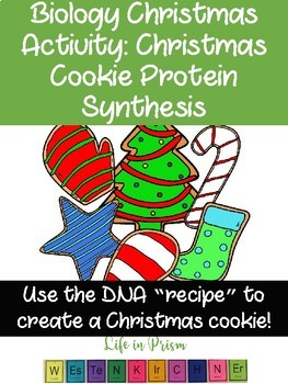 Biology Christmas Activity-Cookie Protein Synthesis