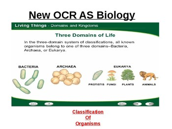 Biology - Classification of organisms