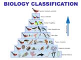Biology Classification - Kingdoms, Cladistics & Dichotomous Keys (Editable)