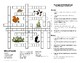 Biology Classroom Activities--Environmental Systems (Ecology)