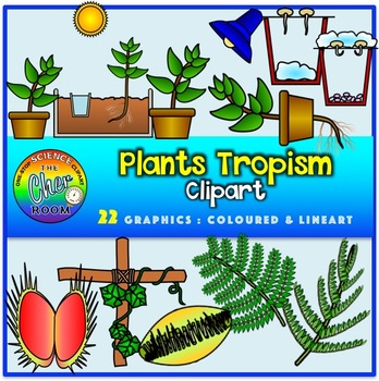 Plants Clipart- Tropism (Stimuli and Response)