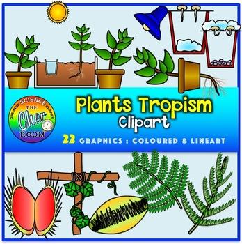 Plants Clipart- Tropism (Stimuli and Response)