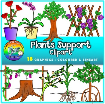 Support in Plants Clipart