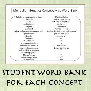 Biology Concept Map Bundle: Ecology, Biochemistry, Cells, Energetics, & Genetics