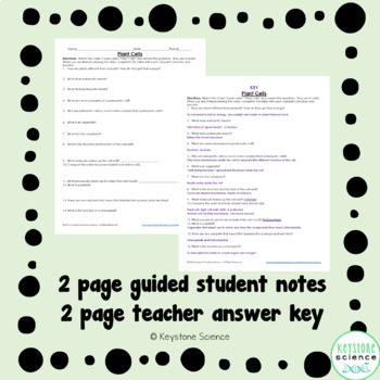 Biology Crash Course Plant Cells Guided Notes and Answer Key