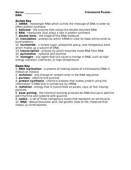 High School Biology Crossword Puzzle - DNA