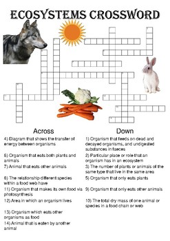 Biology Crossword Puzzle: Ecosystems