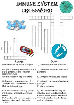 Biology Crossword Puzzle: The immune system (Includes answer key)