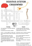 Biology Crossword Puzzle: The nervous system (Includes ans