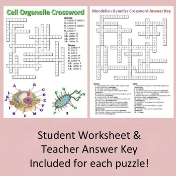 Biology Crossword Puzzles BUNDLE