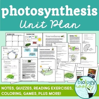 Biology Curriculum Bundle Plus Interactive Notebook