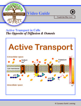 Diffusion and Osmosis - Cell Transport - Biology Video Introduction Activity