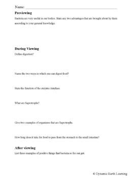 Biology-DIGESTION: FuseSchool Biology Video Guide