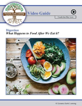 Digestion - What happens to Food after We eat it? Biology Video Guide