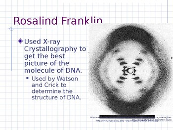 Biology - DNA and Protein Synthesis PPT (Chapter 11)