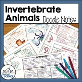 Invertebrates Graphic Organizers or Interactive Notes