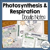 Photosynthesis and Cellular Respiration Graphic Organizers - Illustrated Notes