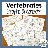 Vertebrates Graphic Organizers - Vertebrate Animals Illust