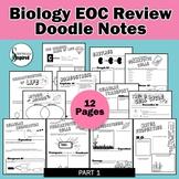 Biology EOC Doodle Notes Final Review - Part 1
