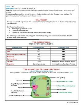Biology EOC Quick Review CELLS SC.912.L.14.1 & SC.912.L.14.3