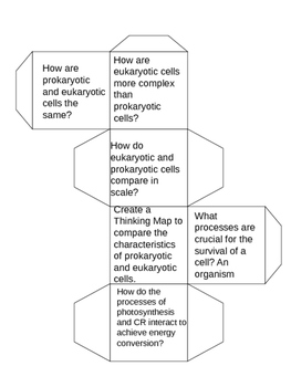 Biology EOC Review Cubes
