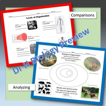 Biology EOC Review - Biological Processes & Systems