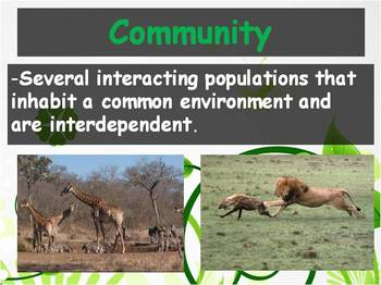 Biology - (3.1 What is Ecology? Powerpoint and Guided Notes)
