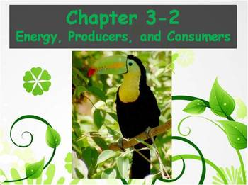 Biology - (3.2 Energy, Producers, and Consumers Powerpoint
