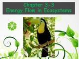 Biology - (3.3 Energy Flow in Ecosystems Powerpoint and Guided Notes)