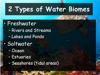 Biology - (4.5 Aquatic Ecosystems Powerpoint and Guided Notes)