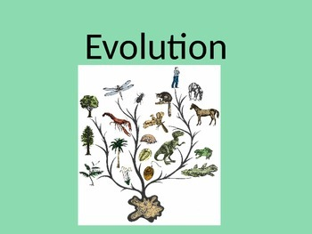 Biology: Evolution (Visually Adapted for ELL/ESL)