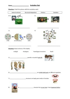 Biology: Evolution (Visually Adapted for ELL/ESL) Summative Exam